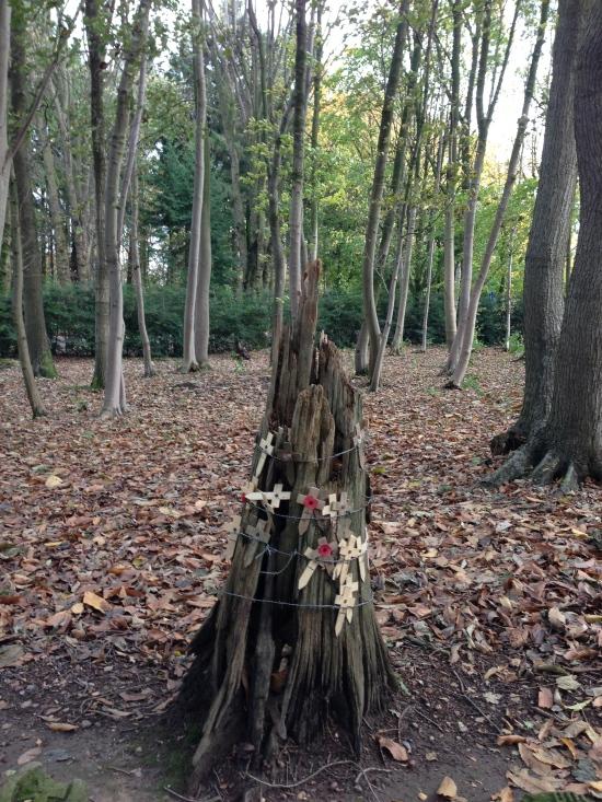 Sanctuary Wood, near Ypres
