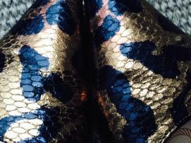 Leopard & Snake